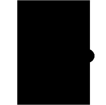 A chord diagram