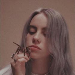 Billie Eilish guitar chords for I wish you were gay