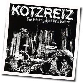 Kotzreiz guitar chords for Ratten im system