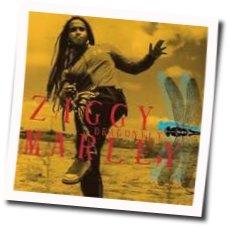 Ziggy Marley guitar chords for Gone away