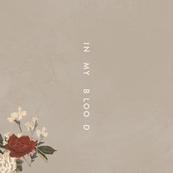 Shawn Mendes guitar tabs for In my blood