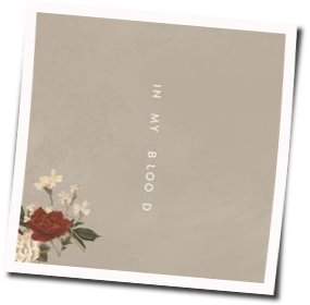 Shawn Mendes guitar tabs for In my blood acoustic