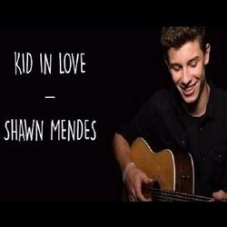 Shawn Mendes guitar tabs for Kid in love