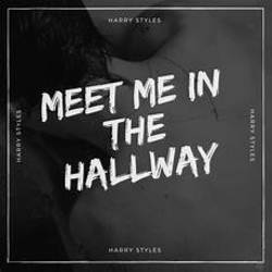 Harry Styles guitar chords for Meet me in the hallway